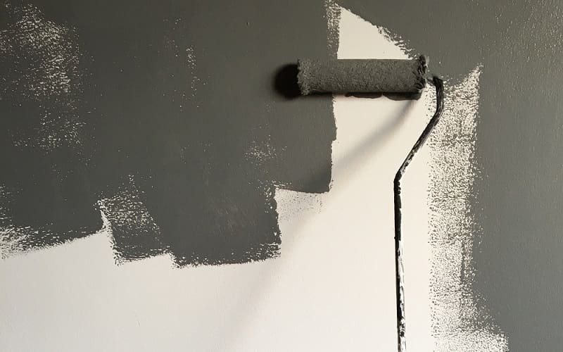 Choosing the Perfect Emulsion for Painting Your Rental Property